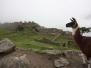 Arequipa - Cuzco